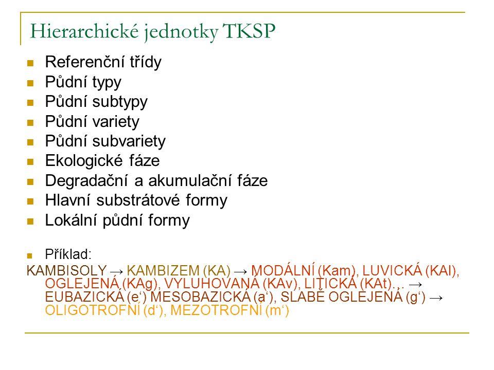 Hierarchické jednotky TKSP