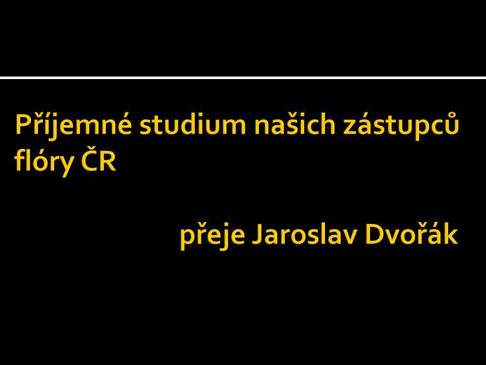 Příjemné studium našich zástupců flóry ČR přeje Jaroslav Dvořák