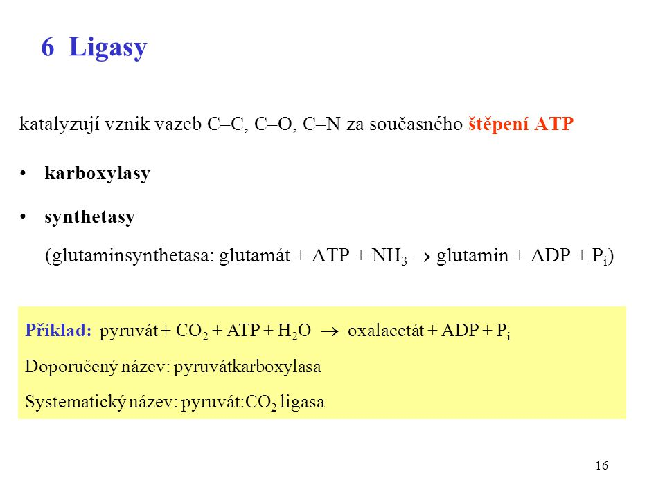 6 Ligasy katalyzují vznik vazeb C–C, C–O, C–N za současného štěpení ATP. karboxylasy. synthetasy.