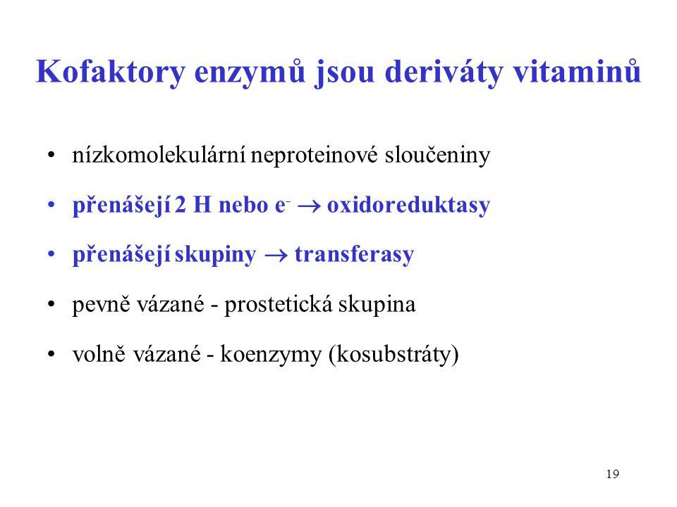 Kofaktory enzymů jsou deriváty vitaminů