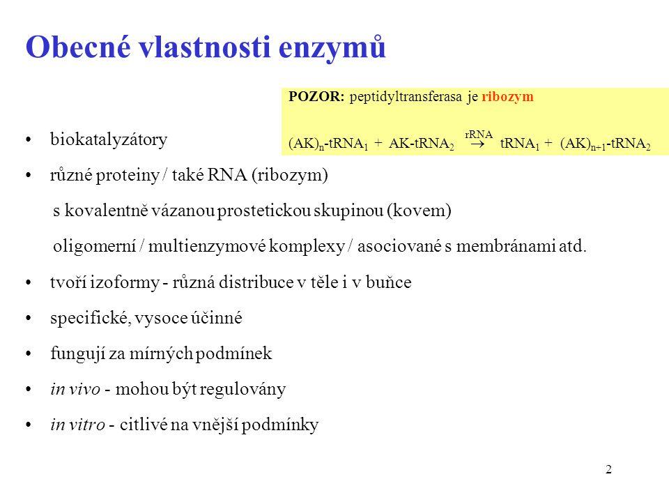 Obecné vlastnosti enzymů