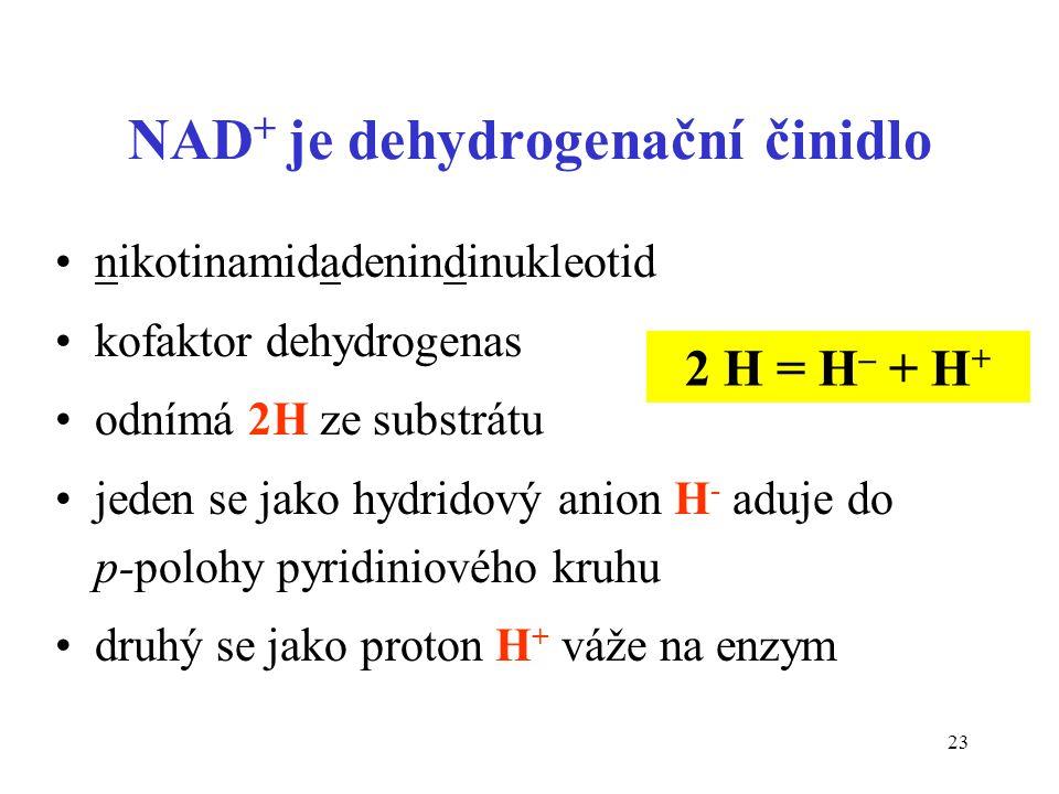 NAD+ je dehydrogenační činidlo