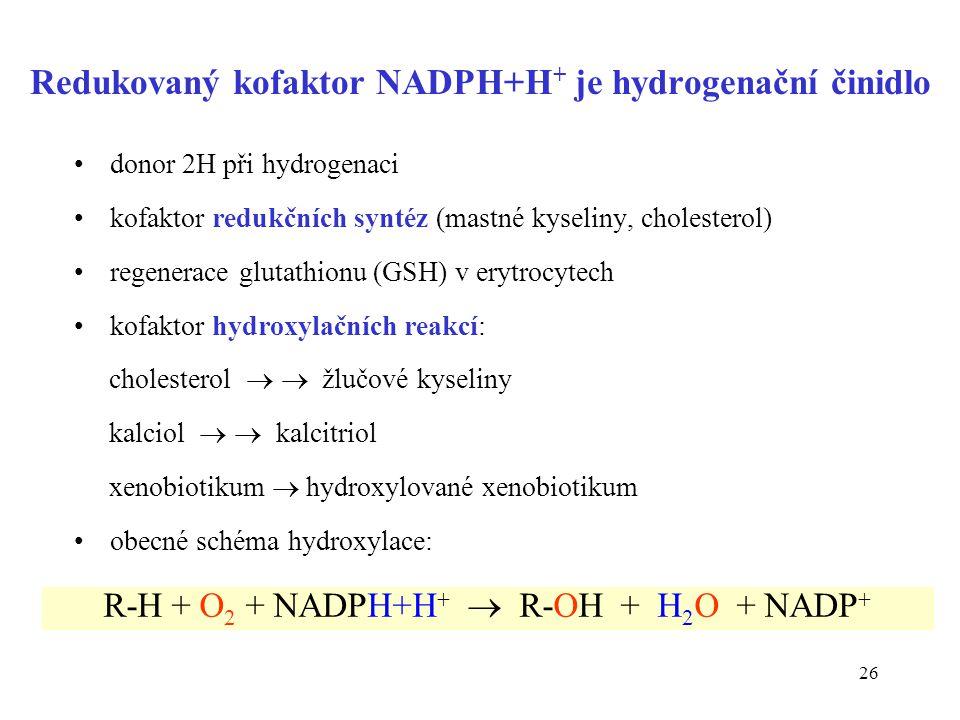 Redukovaný kofaktor NADPH+H+ je hydrogenační činidlo