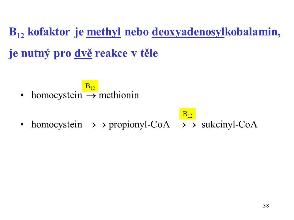 B12 kofaktor je methyl nebo deoxyadenosylkobalamin, je nutný pro dvě reakce v těle