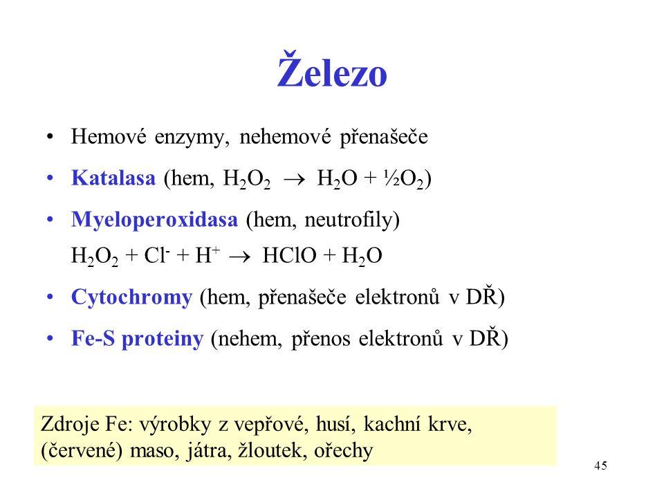 Železo Hemové enzymy, nehemové přenašeče