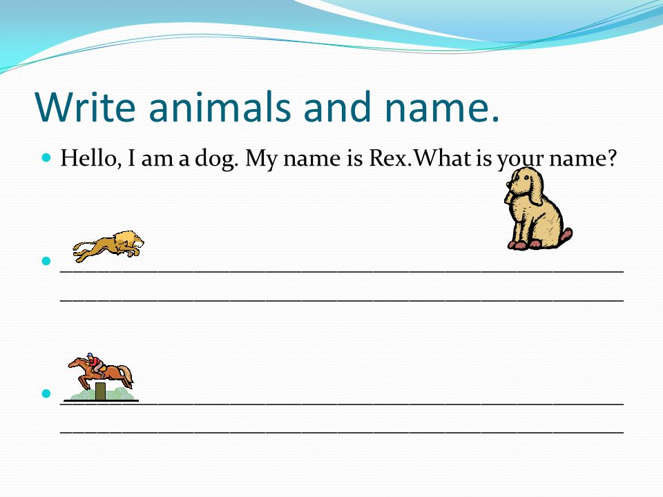 Write animals and name. Hello, I am a dog. My name is Rex.What is your name
