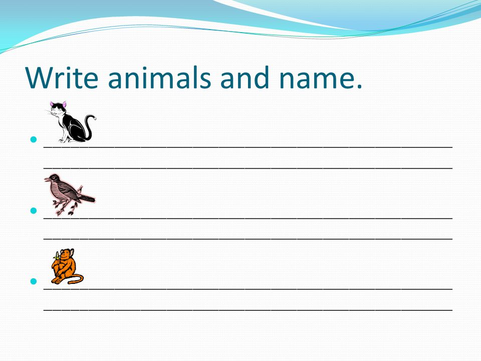 Write animals and name.