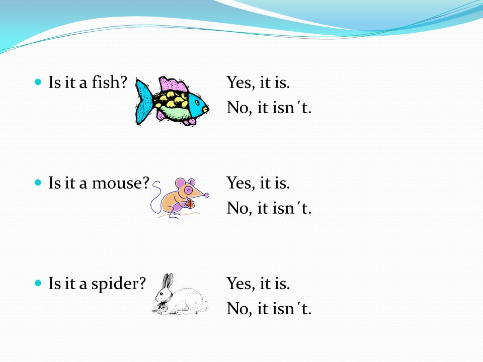 Is it a fish Yes, it is. No, it isn´t. Is it a mouse Yes, it is. Is it a spider Yes, it is.