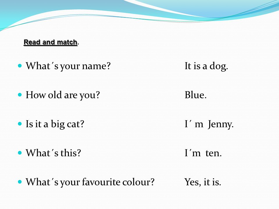What´s your name It is a dog. How old are you Blue.