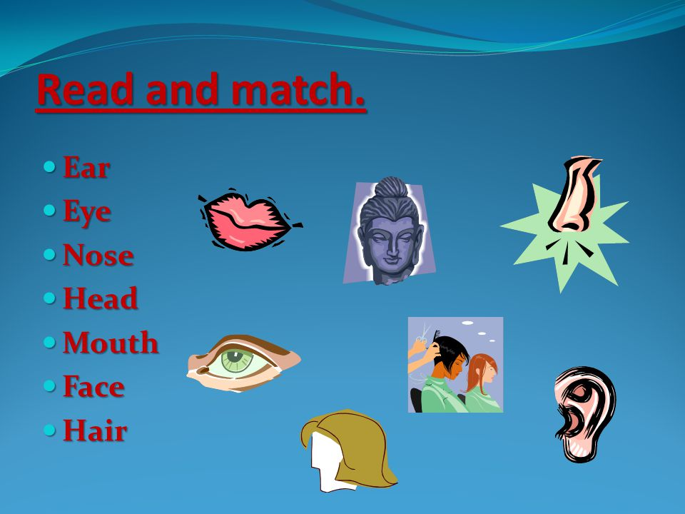 Read and match. Ear Eye Nose Head Mouth Face Hair