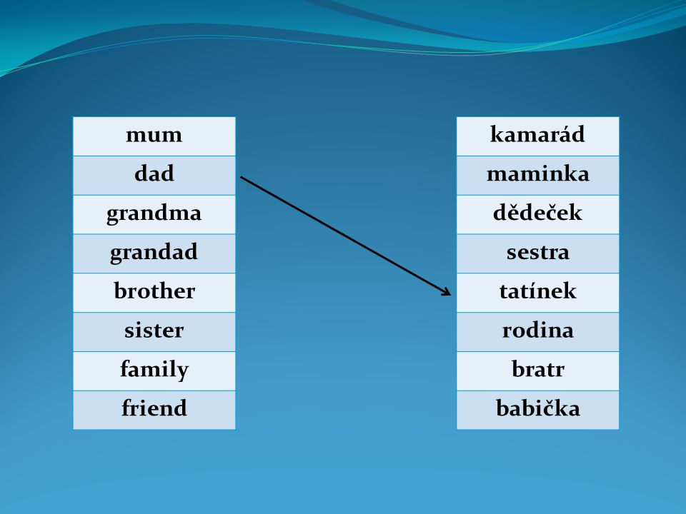 mum dad. grandma. grandad. brother. sister. family. friend. kamarád. maminka. dědeček. sestra.