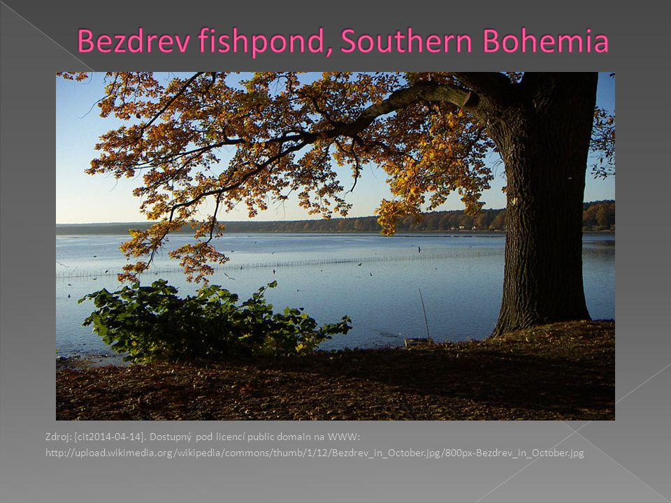 Bezdrev fishpond, Southern Bohemia