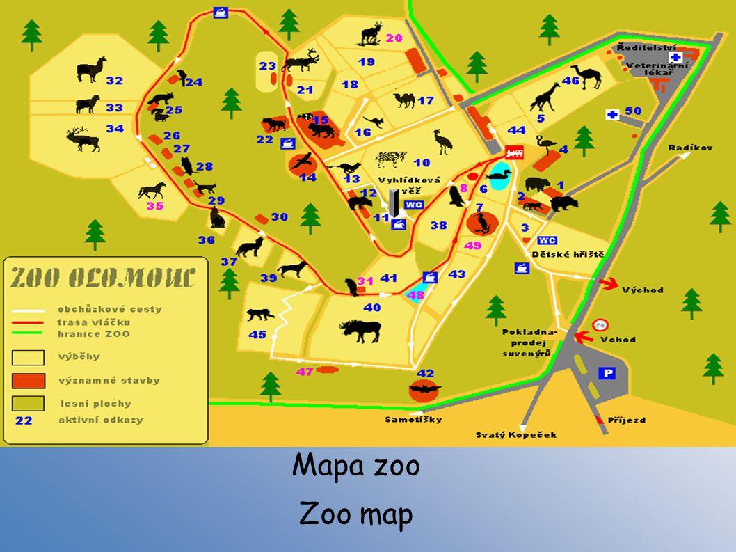 Mapa zoo Zoo map