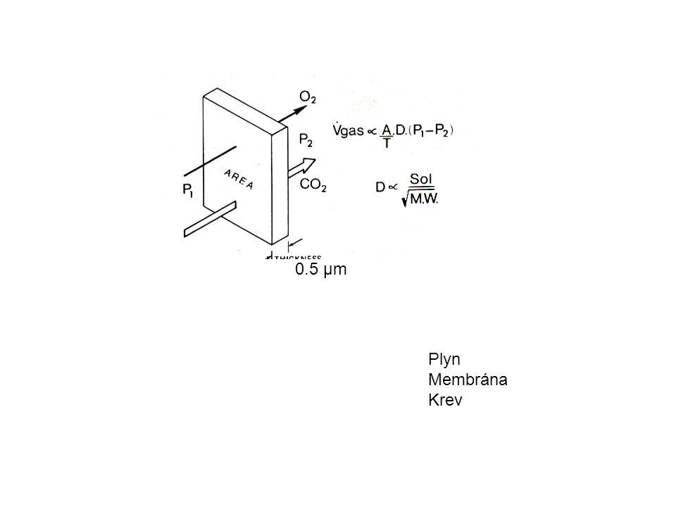 0.5 μm Plyn Membrána Krev