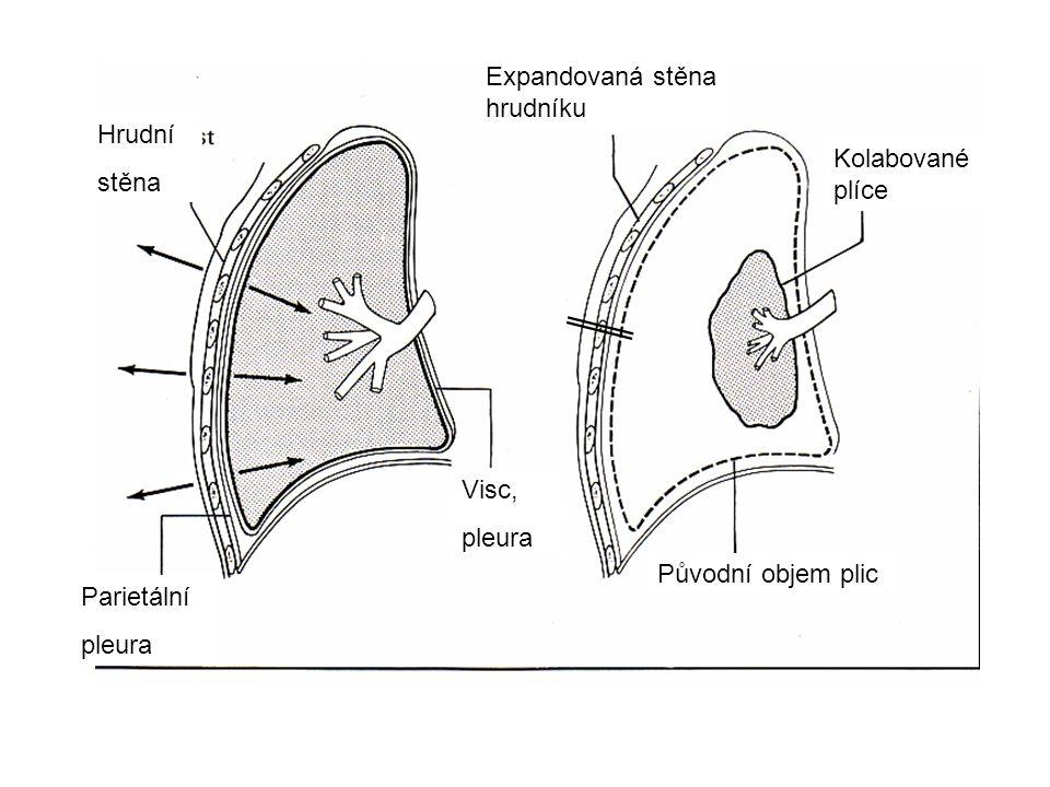 Expandovaná stěna hrudníku. Hrudní. stěna. Kolabované. plíce. Visc, pleura. Původní objem plic.