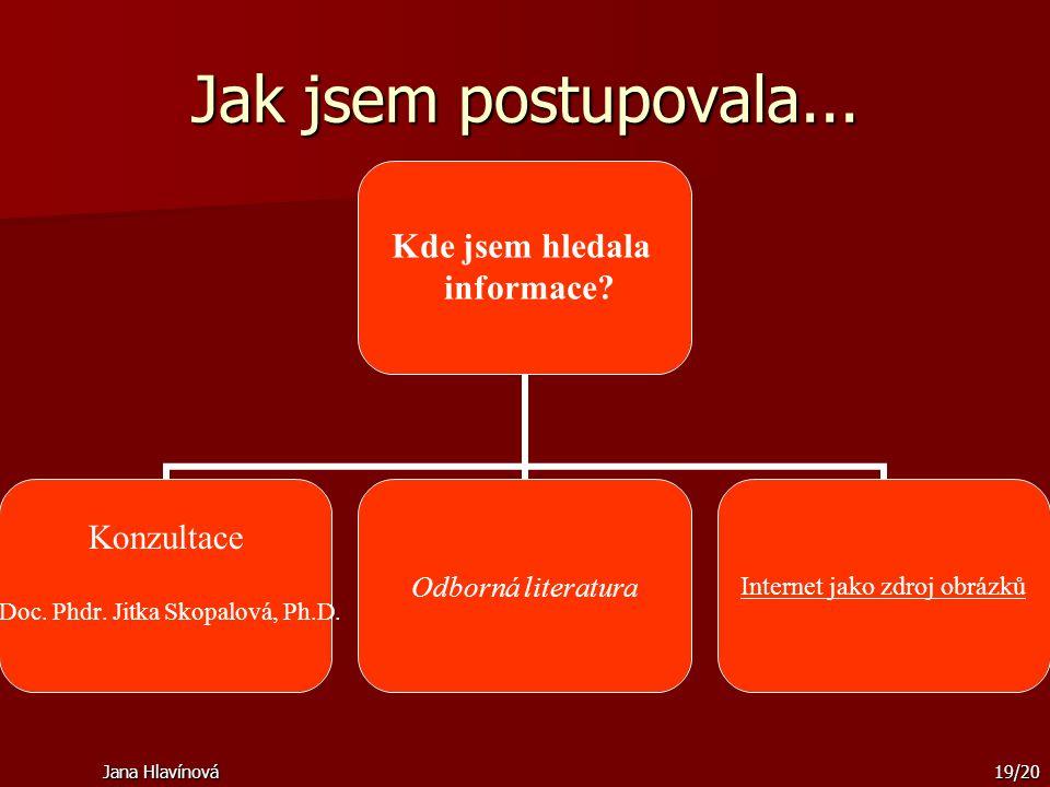 Jak jsem postupovala... Jana Hlavínová
