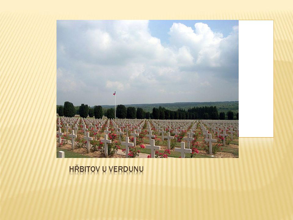 Hřbitov u Verdunu