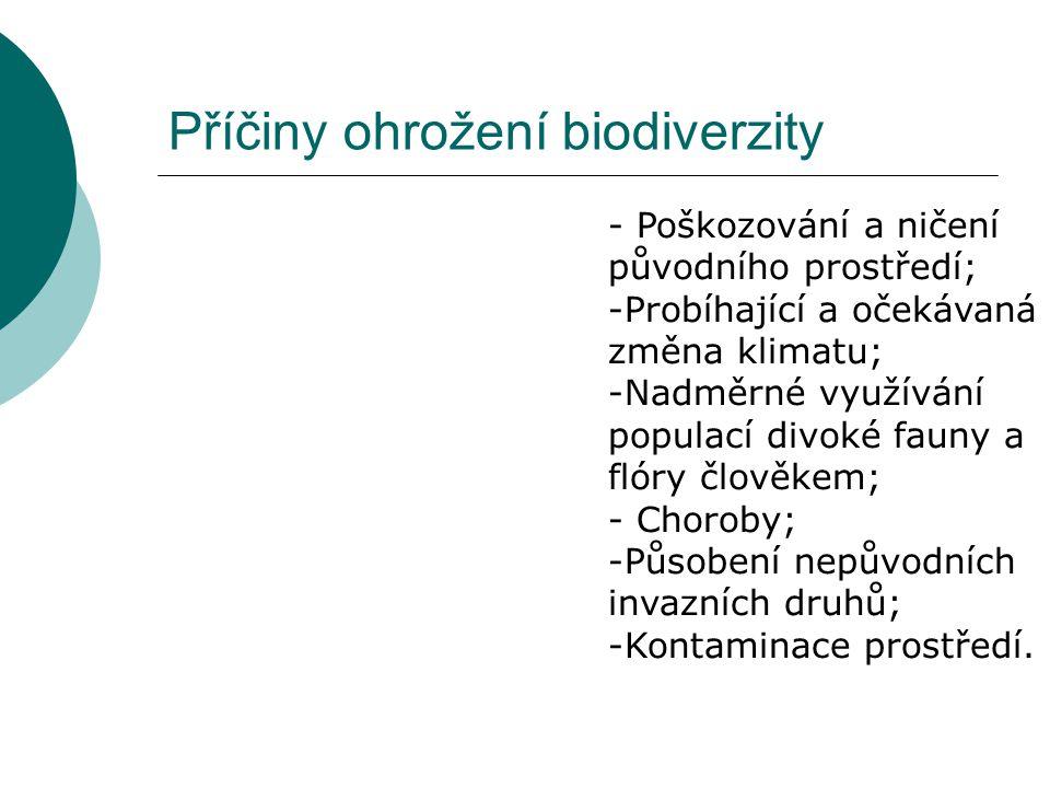 Příčiny ohrožení biodiverzity
