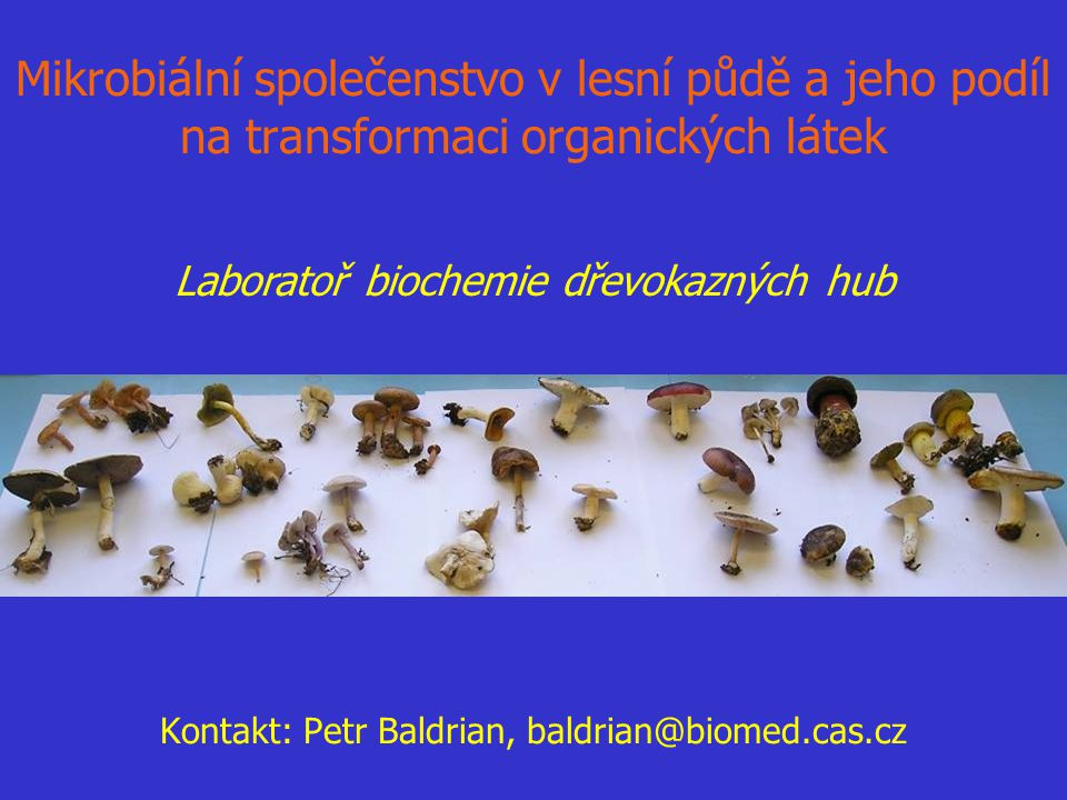 Kontakt: Petr Baldrian, baldrian@biomed.cas.cz