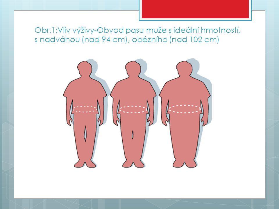 Obr.1:Vliv výživy-Obvod pasu muže s ideální hmotností, s nadváhou (nad 94 cm), obézního (nad 102 cm)