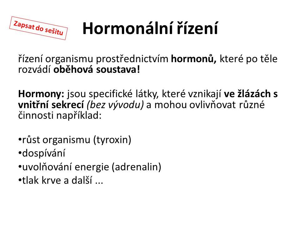 Hormonální řízení Zapsat do sešitu. řízení organismu prostřednictvím hormonů, které po těle rozvádí oběhová soustava!
