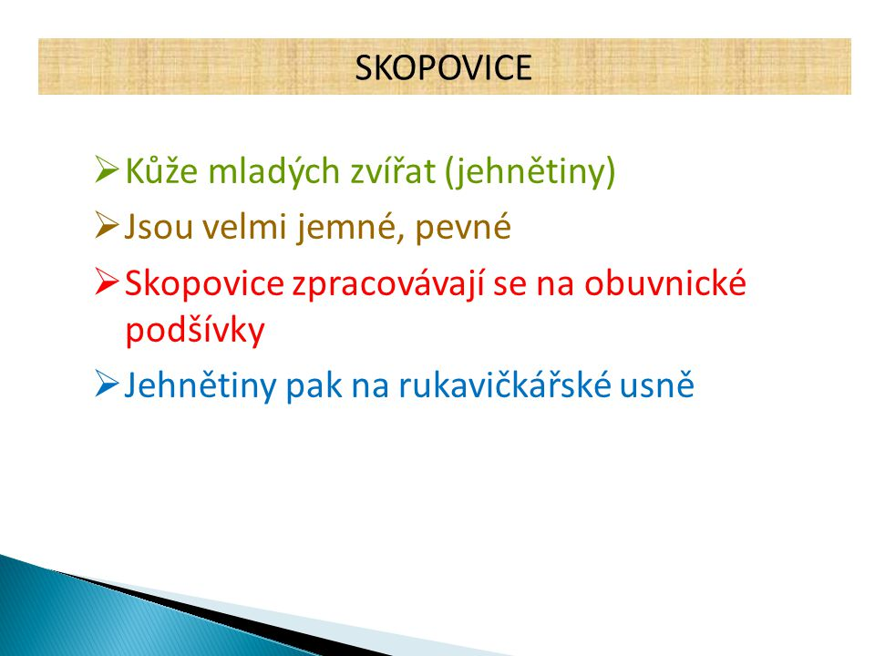 SKOPOVICE Kůže mladých zvířat (jehnětiny) Jsou velmi jemné, pevné. Skopovice zpracovávají se na obuvnické podšívky.