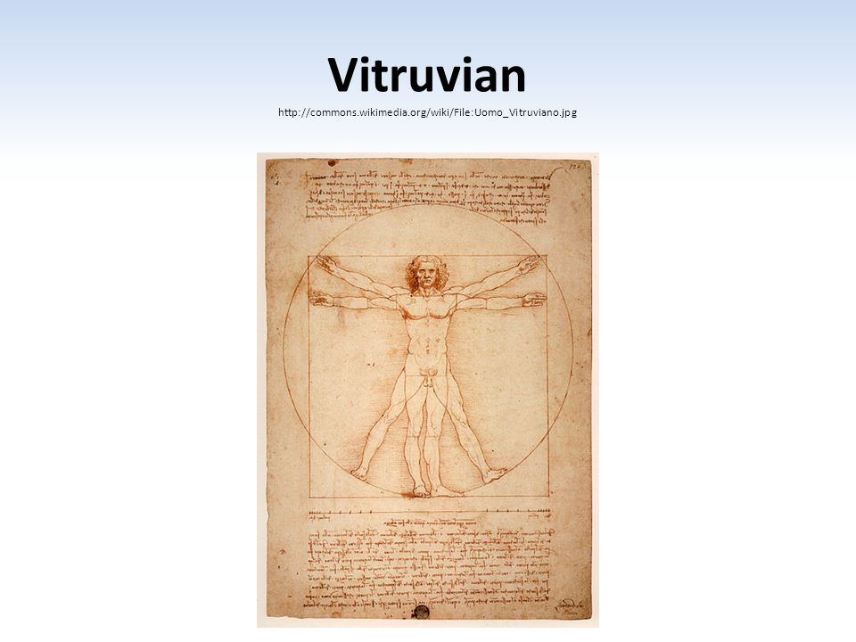 Vitruvian http://commons.wikimedia.org/wiki/File:Uomo_Vitruviano.jpg
