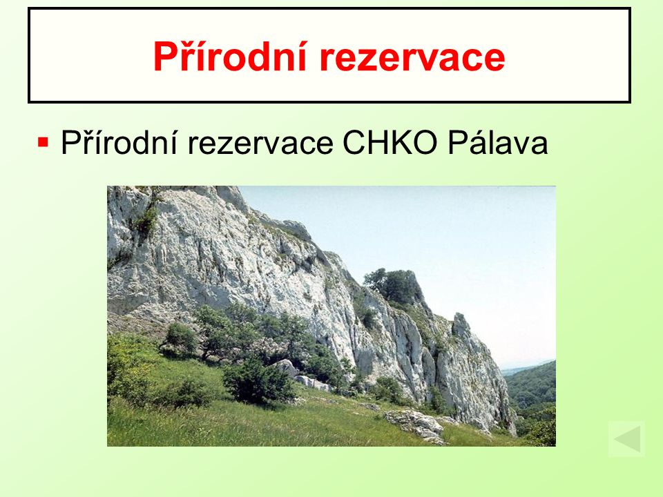 Přírodní rezervace Přírodní rezervace CHKO Pálava