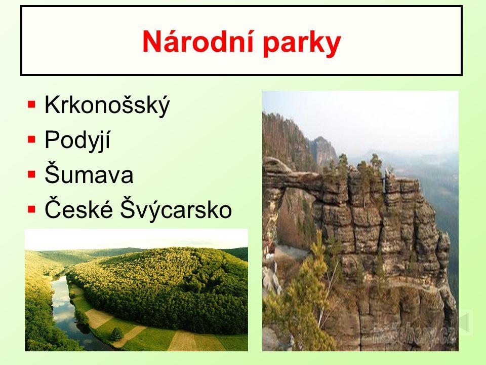 Národní parky Krkonošský Podyjí Šumava České Švýcarsko