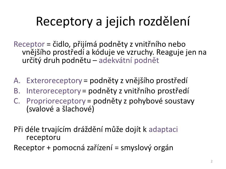 Receptory a jejich rozdělení