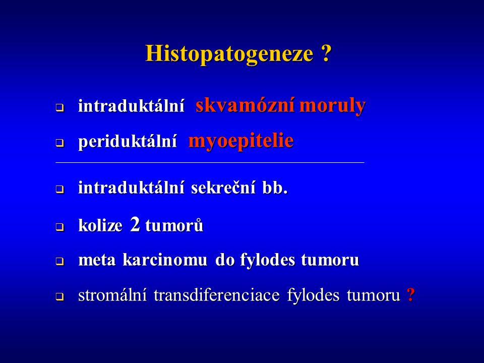 Histopatogeneze intraduktální skvamózní moruly