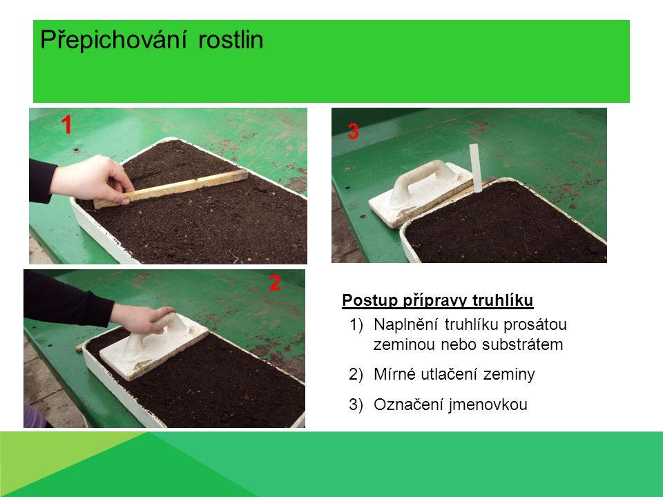Přepichování rostlin 1 3 2 Postup přípravy truhlíku