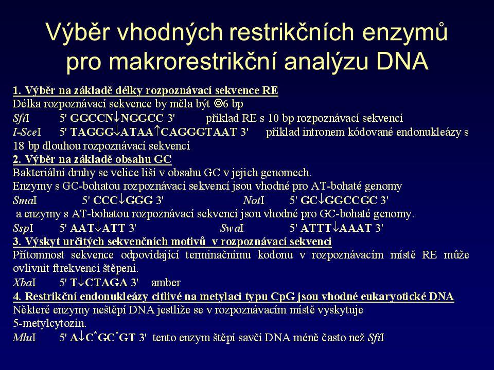 Výběr vhodných restrikčních enzymů pro makrorestrikční analýzu DNA