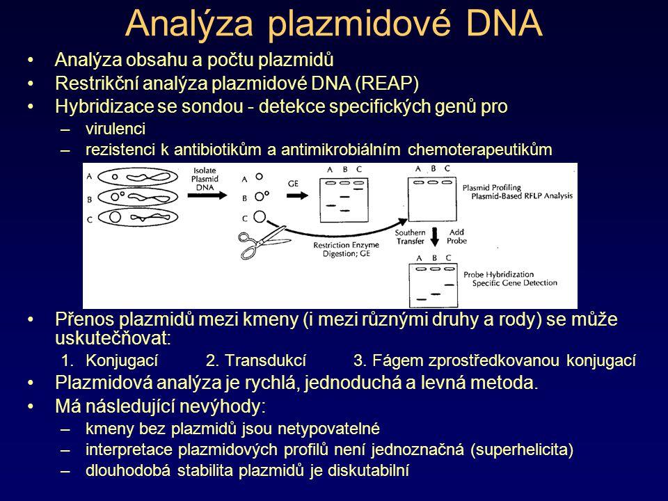 Analýza plazmidové DNA