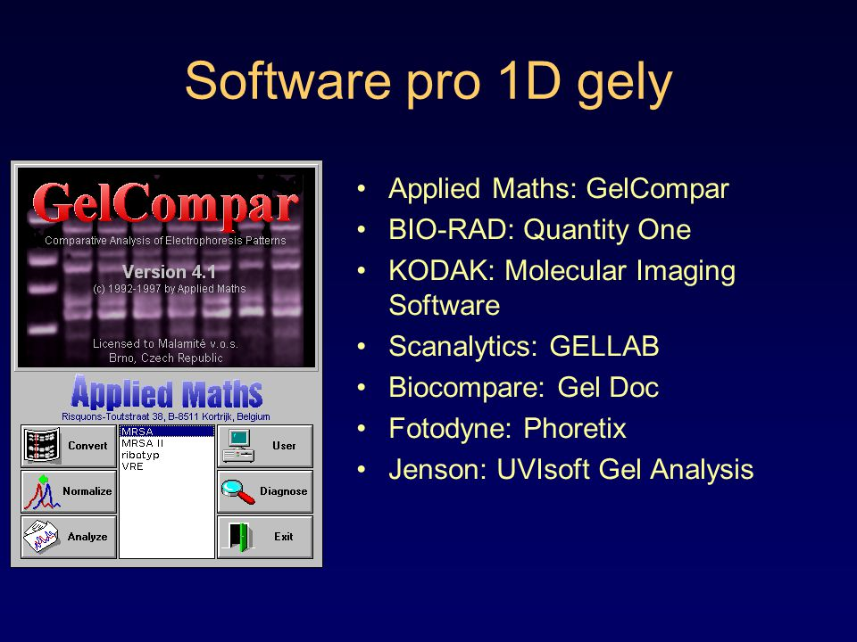 Software pro 1D gely Applied Maths: GelCompar BIO-RAD: Quantity One