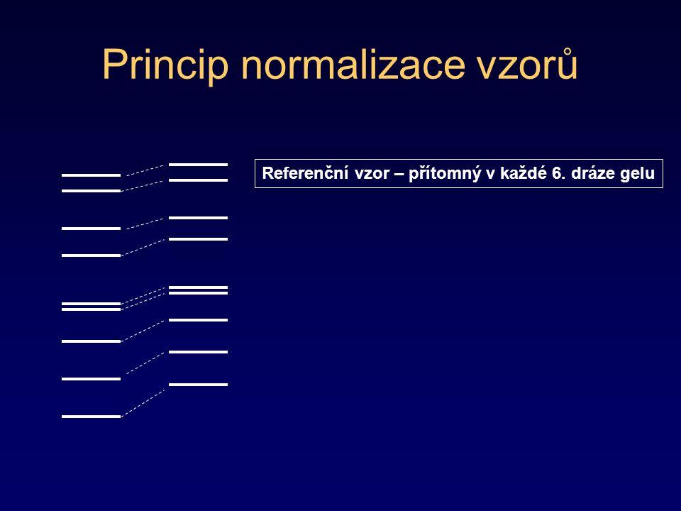 Princip normalizace vzorů
