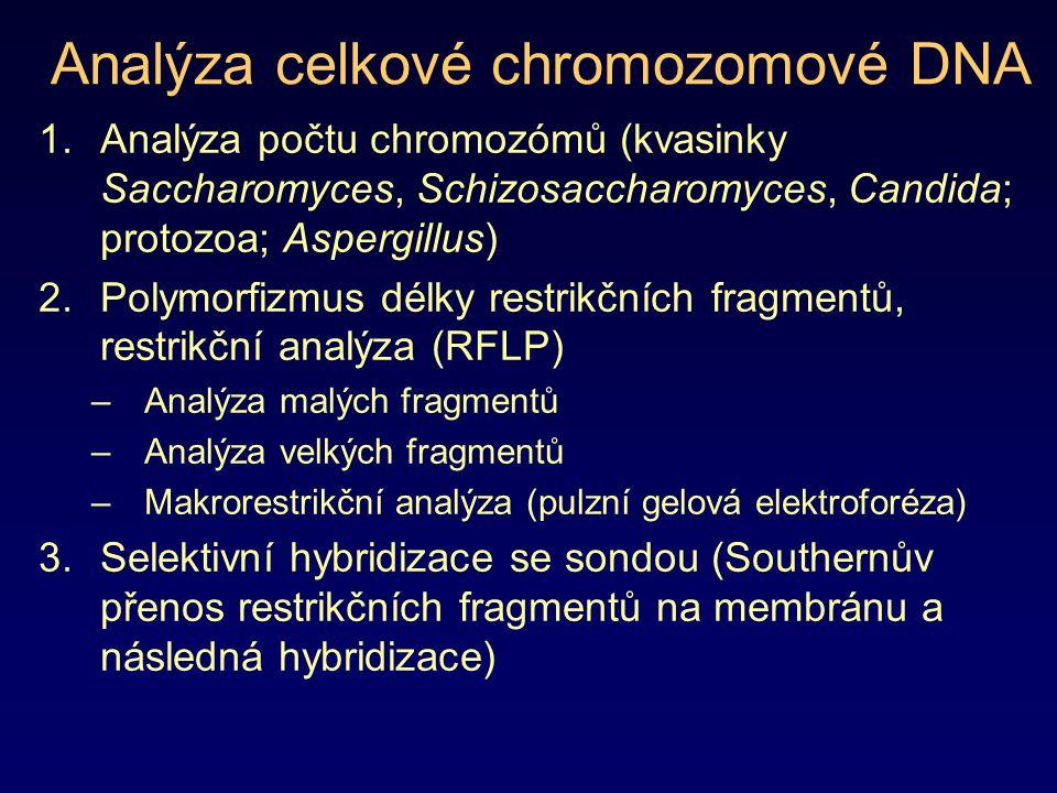 Analýza celkové chromozomové DNA