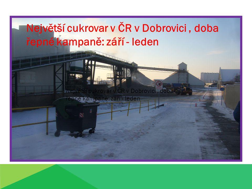 Největší cukrovar v ČR v Dobrovici , doba řepné kampaně: září - leden