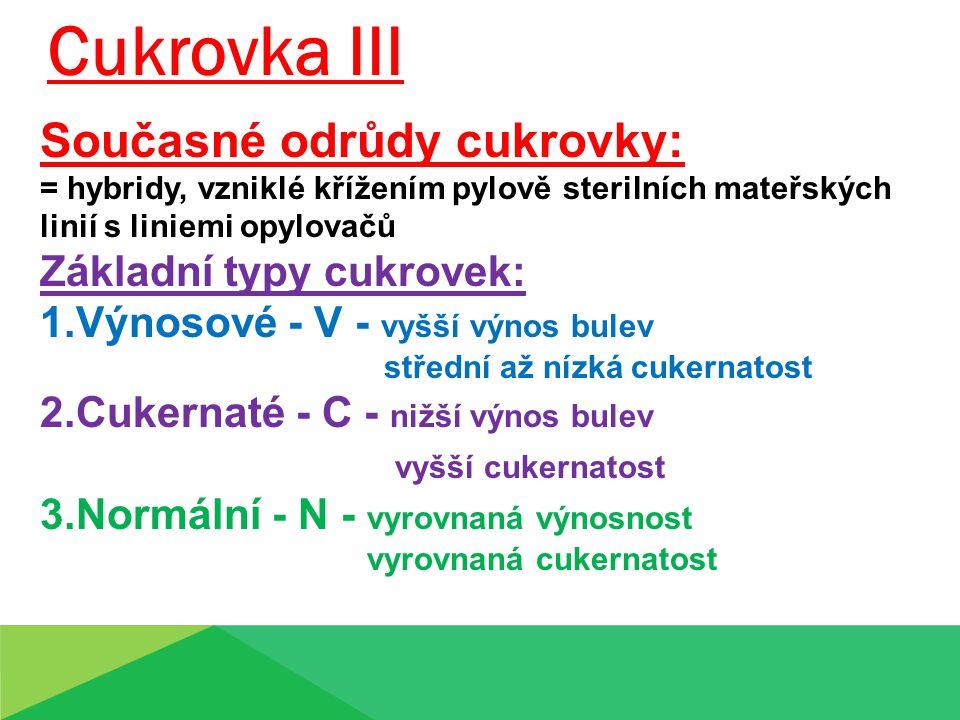 Cukrovka III Současné odrůdy cukrovky: Základní typy cukrovek: