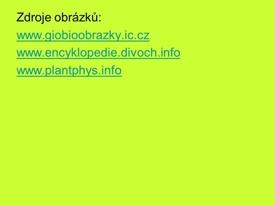 Zdroje obrázků: www. giobioobrazky. ic. cz www. encyklopedie. divoch