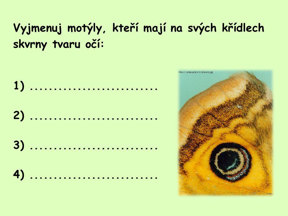 Vyjmenuj motýly, kteří mají na svých křídlech skvrny tvaru očí: 1). 2)