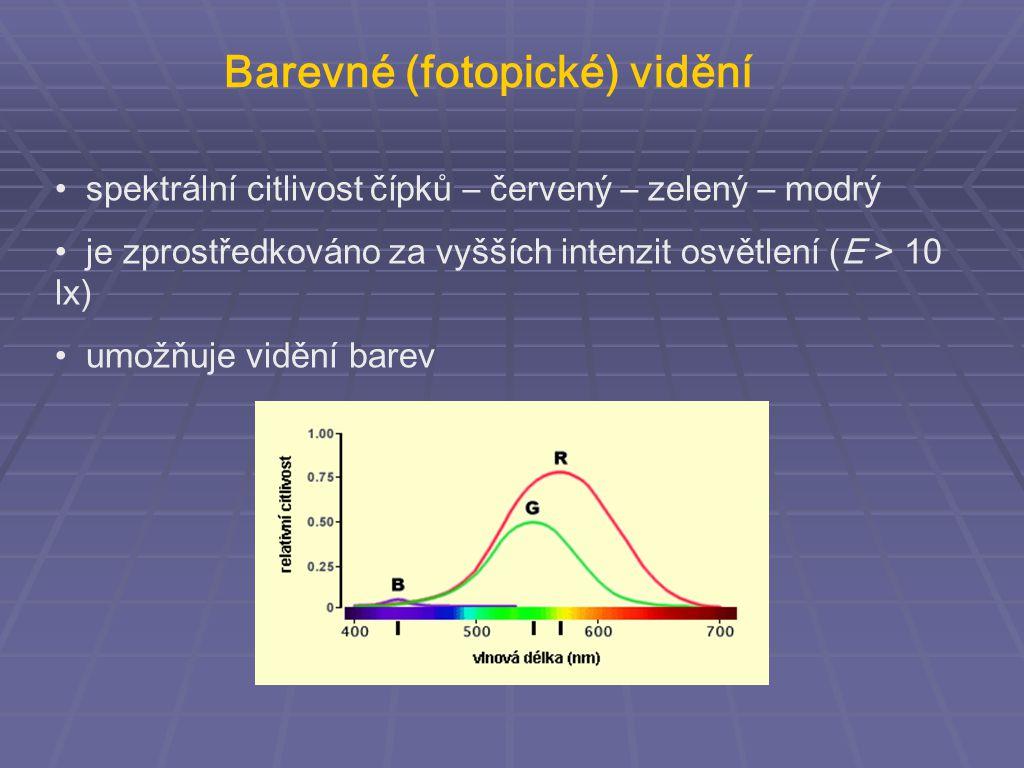 Barevné (fotopické) vidění