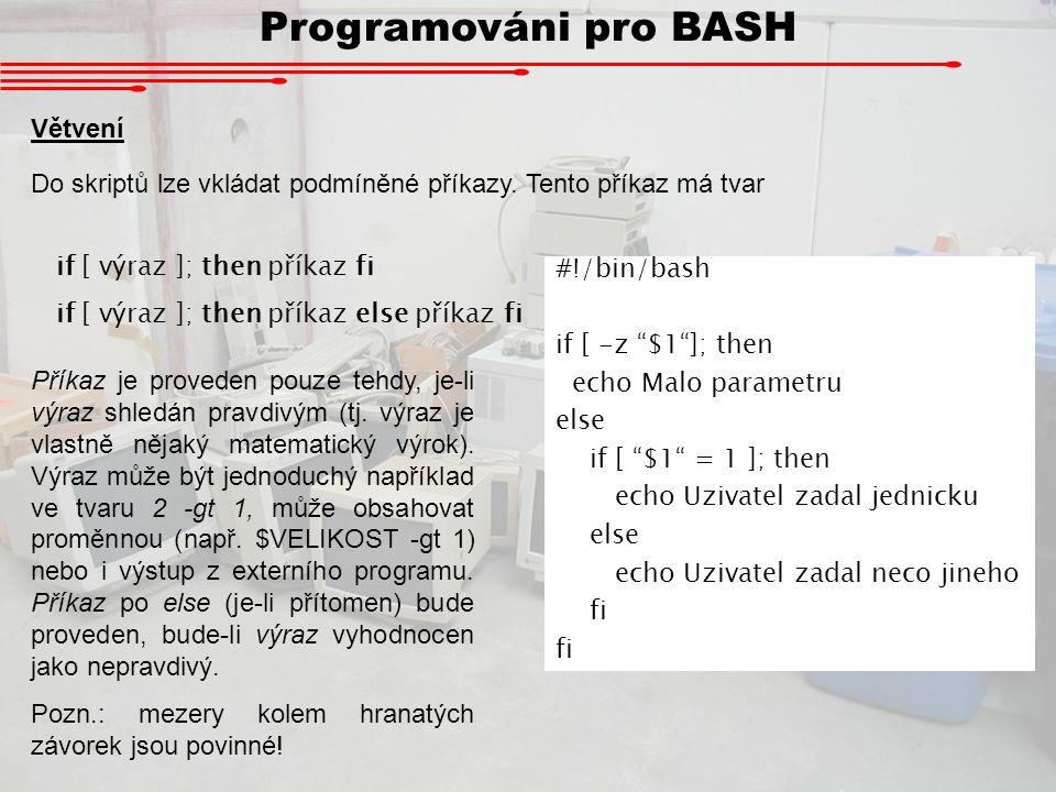 Programováni pro BASH Větvení