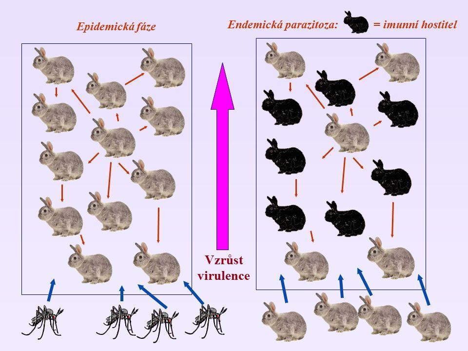Endemická parazitoza: = imunní hostitel