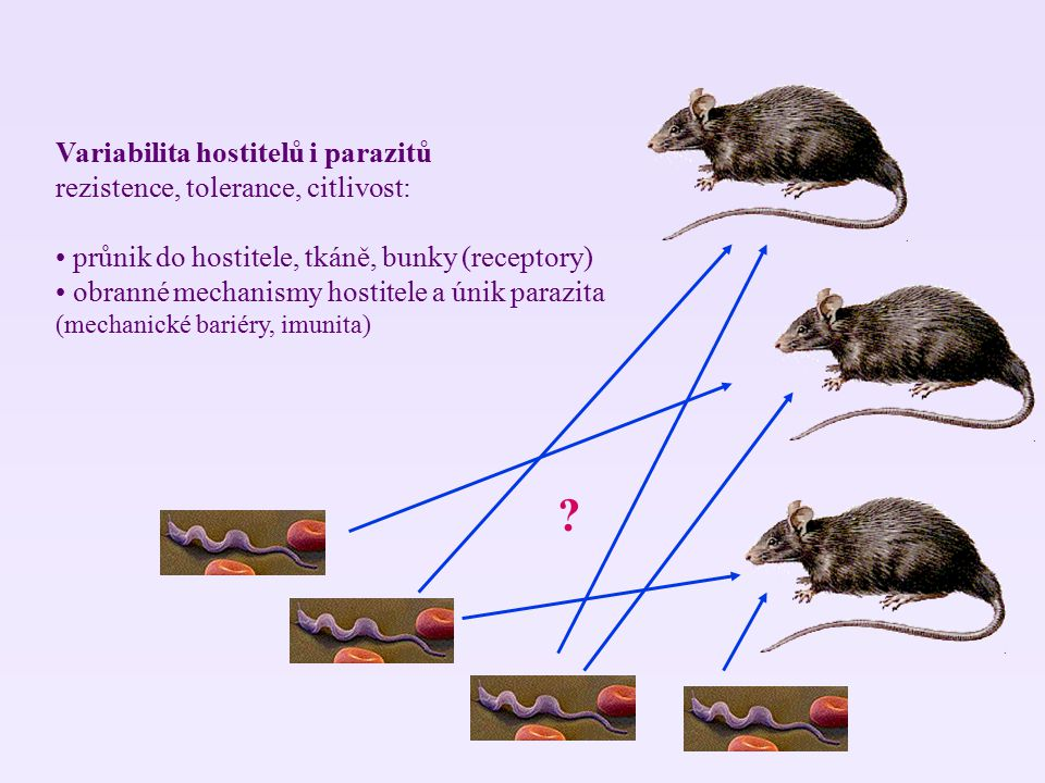 Variabilita hostitelů i parazitů rezistence, tolerance, citlivost:
