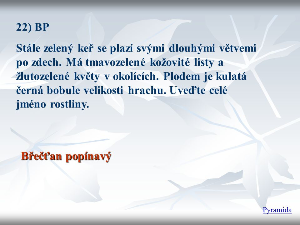 22) BP