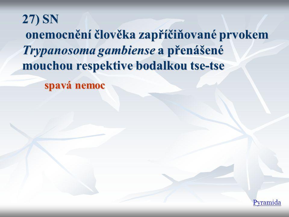 27) SN onemocnění člověka zapříčiňované prvokem Trypanosoma gambiense a přenášené mouchou respektive bodalkou tse-tse
