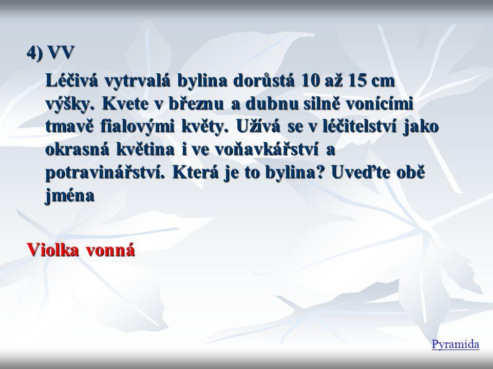 4) VV