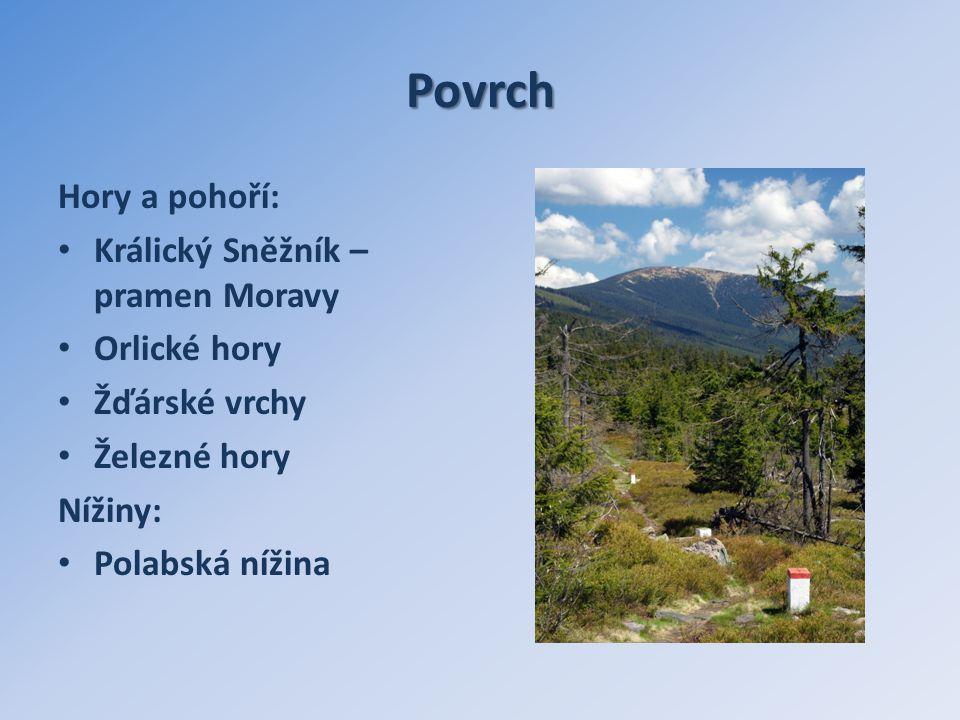 Povrch Hory a pohoří: Králický Sněžník – pramen Moravy Orlické hory