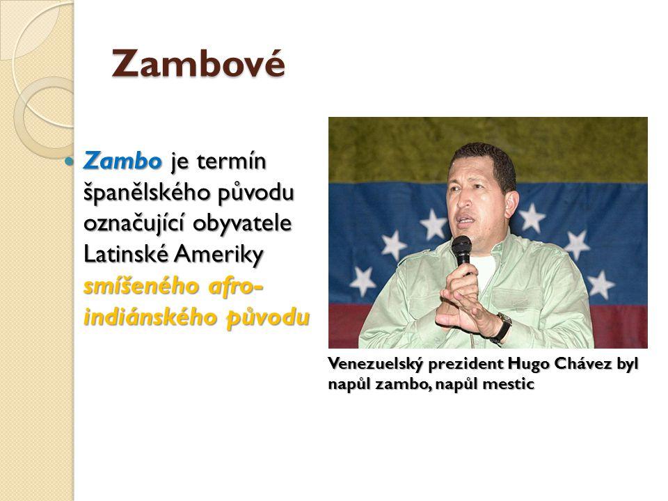 Zambové Zambo je termín španělského původu označující obyvatele Latinské Ameriky smíšeného afro- indiánského původu.